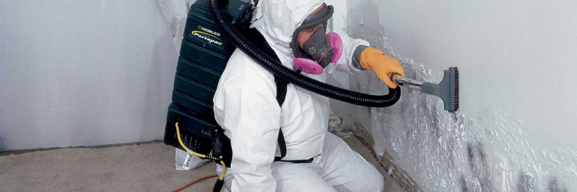 Mold Remediation: Professional Mold Removal Techniques