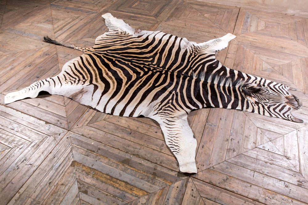 What Is Zebra hide rug?