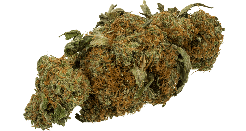 How To Choose a Weed store near me?